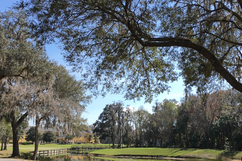 7 Amazing Places To Play Golf In Tampa Travelmath Blog